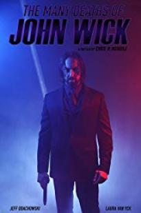 The Many Deaths Of John Wick