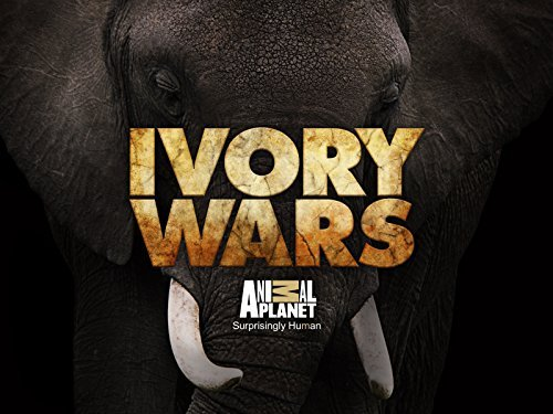 Ivory Wars: Season 1