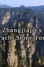 Zhangjiajies Miracle Stone Forest